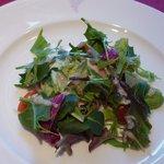 キャノン - レザン:茨城産匠美鶏と季節の野菜 セロリ・ほうれん草のバロンティーヌサラダ仕立て