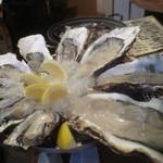 かき小屋 恵比寿 - 生牡蠣三種食べ比べ