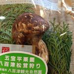 五宝平自然園 - おみやげの松茸