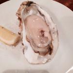 フニクラ - 牡蠣