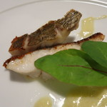 茨城レストラン フェリチタ - 平潟港石なぎのポワレ アップ