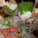 海麦酒 - ウチワエビと鹿児島の養殖車海老の刺身
