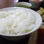 藤吉郎 - ご飯 大
