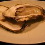 シェゴメ - 071223シェゴメの牡蠣
