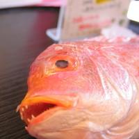 らーめん厨房 どる屋 - 鯛らーめんの厳選素材「鳥取県境港の鯛一夜干し」