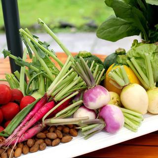 信州の採れたて新鮮野菜をふんだんに使用