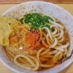広島駅弁当 うどん - (2014.10.29)天ぷらうどん
