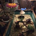 のこされ島 - ザリガニ釣り水槽