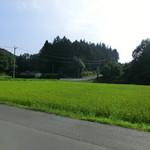 豆腐茶屋 佐白山のとうふ屋 - お店の前の田園。2013年8月。