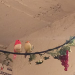ニジイロ アルコバレーノ - 天井に小鳥さん発見((´艸`*))