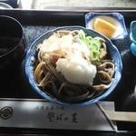 今庄 そばの里 - 料理写真:「おろしそば」600円