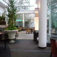 アマデウス-☆広々とした空間がホテルのお店ですよね~◎☆