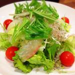 おやじの台所 - 鯛とジャコのサラダ