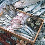 がってん寿司 - 毎朝産地・市場より直送!旬のおいしい魚を、毎日お届けします