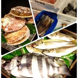 ハマの市場で、新鮮なお魚を調達!!