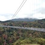 32396327 - 九重夢大吊橋に出かけ、再び「山荘無量塔」に戻って昼食