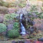 光雲閣 - 裏山からの滝