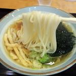 うどん茶屋 海津屋 - 2014年11月9日(日) きざみ揚げうどん(680円) 麺リフト