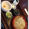 Hakonenoiori - 料理写真:つけとろそば 大盛 2014.11