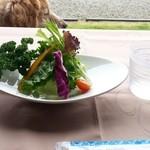 ザ・ヴィンテージビュー - 料理写真:サラダ