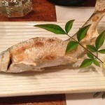 酒饌もり澤 - あゆ