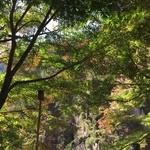 昇仙峡 金渓館 - 席からの景色
