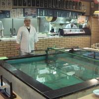 大八寿司 - 活き魚料理は最高