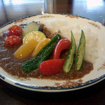 OASI - 7種の夏野菜カレー