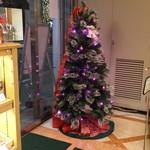 アマンド  - クリスマスツリー