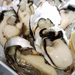 産地直送の牡蠣たち