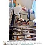 たいやき そら - 吉祥寺周辺で屋台営業していた 「たいやき そら」 一丁焼き・薄皮・トロリあんこ 中道通り脇道に 店舗オープン(画像・情報提供:@kichijoji_ziinz)