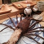 しゃれねずみ - 伊勢海老のお刺身 姿造り