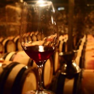 厳選した150種のビオワイン
