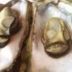 世古牡蠣店 - 牡蠣なぅ
