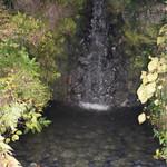 お食事処 もとだき - 庭から見れる小さな滝