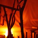 バー トタン  - アート品が店内のインテリア