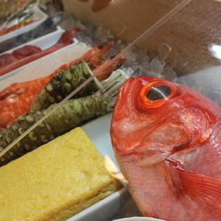 相模湾の地魚、活魚