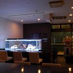 Bistro&ShotBar you you - 巨大な水槽です海水魚が泳いでます。クマノミがチョーカワイイ