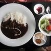 Niyutokiyo - 料理写真:ビーフカレー 1296円