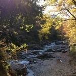 33073505 - 秋川のせせらぎと、秋陽の優しさが体の隅々に沁み渡るカフェ