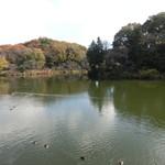三ツ池公園 売店 -