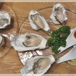 OYSTERS,INC. -