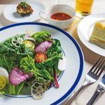 トラベルカフェ クッチーナ イタリアーナ - 有機野菜のサラダランチ