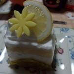 33204743 - 塩レモン