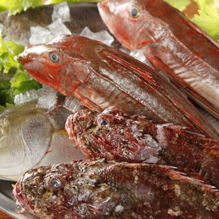全国各地の新鮮な魚介!