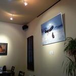 樹ノー - カフエと同様、壁の写真が印象的な店内