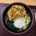 佐野サービスエリア(下り線)レストラン・スナックコーナー - かき揚げそば&温泉玉子
