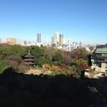 33327028 - 椿山荘の15階から見下ろす朝の景色