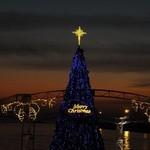 33445068 - 大阪南港ATCの海辺のステージに高さ約13mの光輝くクリスマスツリーが登場