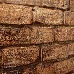 さぼうる - 煉瓦の壁には落書きだらけ